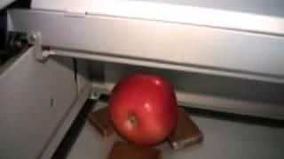 laser engraved apple