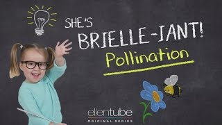 The Ellen Show: Bees, Honey, and Pollination thumbnail