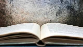 Спокойная Музыка для Чтения Книг, Обучения и Подготовки к Экзаменам: Расслабляющая Музыка для Сна