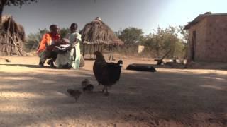 Promise Packs Zambia Short Film 2013