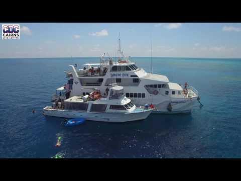 Cairns Dive Center Great Barrier Reef
