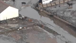 Спасатели на вертолетах снимают жителей тонущего Колорадо с крыш домов