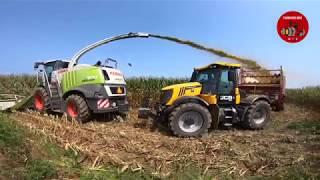 Chopping Corn Silage near Eaton Ohio - August 2018