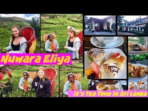 What to See and Do in Nuwara Eliya