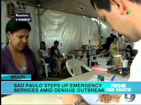 Dengue epidemic hits Sao Paulo