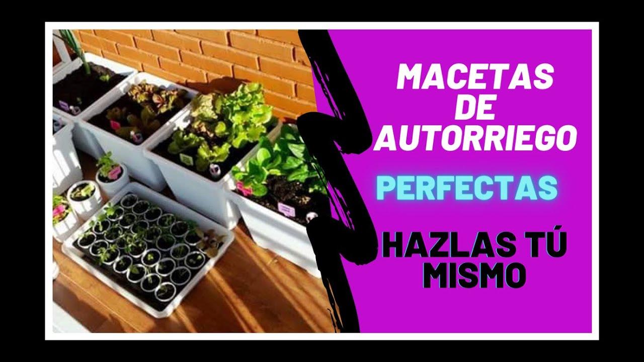 Maceta con sistema de autorriego by be ta ltima edici n - Macetas con autorriego ...