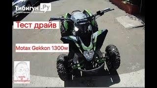 Тест драйв Motax Gekkon 1300w