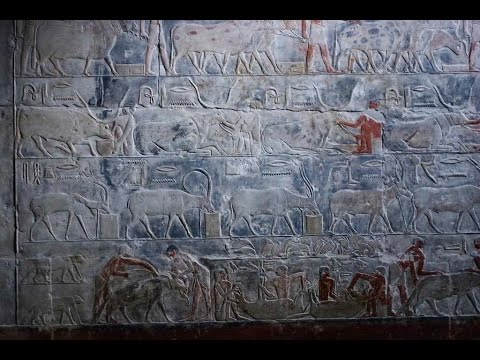 Linda Evans: Ancient Egyptian and Egyptological attitudes towards the natural world