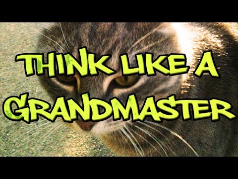 GM Polgar Tells Us How to Think Like a Grandmaster - Beginner Chess Video (Suitable for Kids)