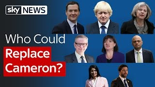 Who Could Replace David Cameron?