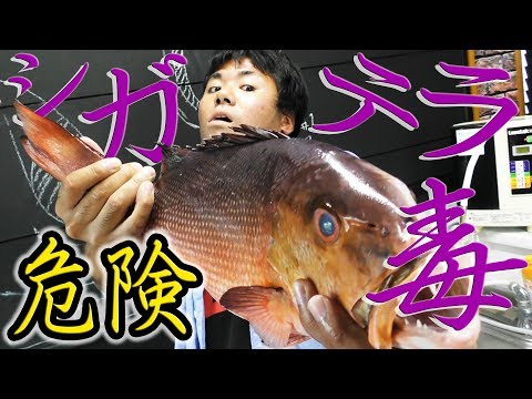 【危険】シガテラ毒魚を食べる【危険】
