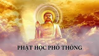 ❤22 tập Phật học phổ thông phần 22❤
