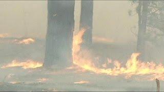 Rusya'da orman yangını kontrol altına alınamıyor