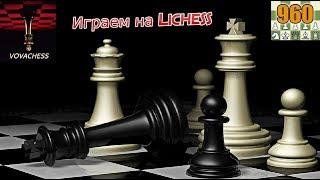 Годовая арена в шахматы Фишера на Lichess 16.01.2019