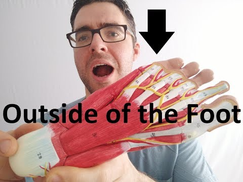 Side of the Foot & Lateral Foot Pain [Best Home Treatment 2020!]