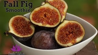 Fall Fig Smoothie