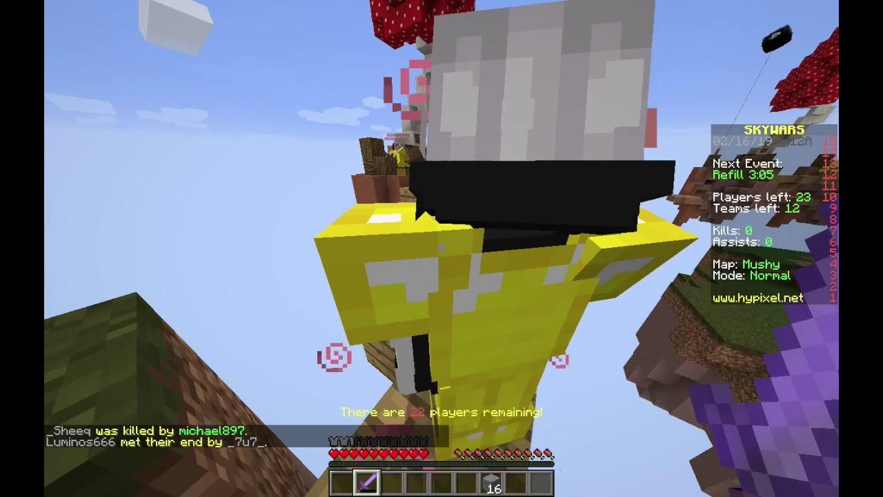 EPIC GUYS !!!! - Minecraft Java Edition Server Hypixel Skywars
