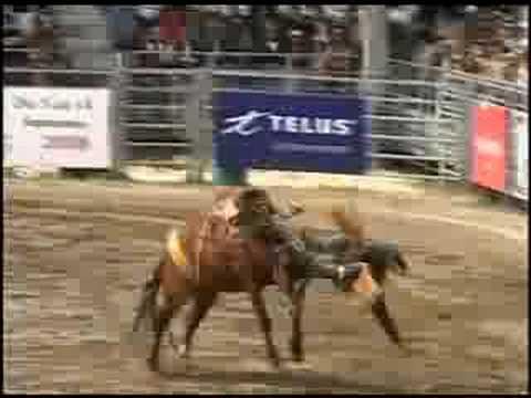 2008 Maritime Fall Fair Professional Rodeo