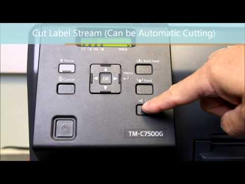 EPSON C7500 ColorWorks Series Label Printers- Secrets Revealed - KTEC GROUP UK