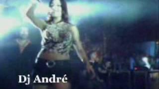 WASHINGTON BRASILEIRO VIDEO DO NOVO SHOW(Dj André Esse Sim é Moral., 2009-02-05T23:18:47.000Z)