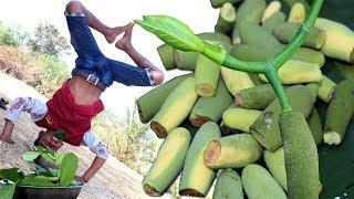 Kathaler Muchi & Tetul (Tamarind) Makha   Village Delicious Food in Nature