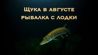 Щука в августе - рыбалка с лодки в Астрахани.
