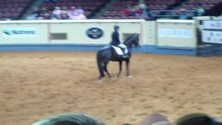 Repeat youtube video Cherie Gaebel and Larks Justin at Quarter Horse World Championships in OKC.MP4