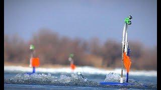 АКТИВНЫЙ КЛЁВ ОКУНЯ НА ЖЕРЛИЦЫ Зимняя рыбалка на щуку и окуня Жерлицы Последний лёд