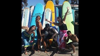HOW TO READ THE ONLINE SWELL SURF REPORT AT MALIBU LONGBOARDS FOR LA AREA