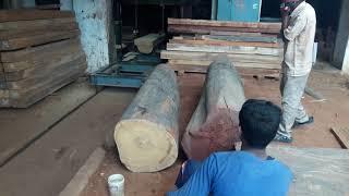 Teakwood cutting to make planks