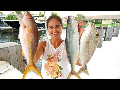 WE CAUGHT SO MANY Fish!! CATCH CLEAN & COOK- Multi Species Reef Fish!