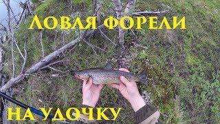 Ловля форели на удочку / Trout fishing for the bait