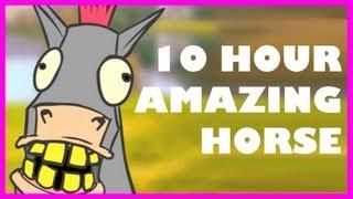 Amazing Horse | 10 Hours