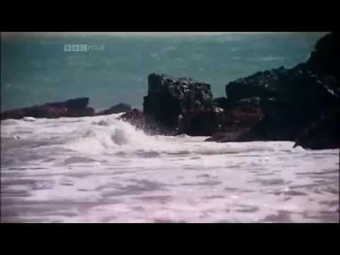 1/6 The Art of Cornwall