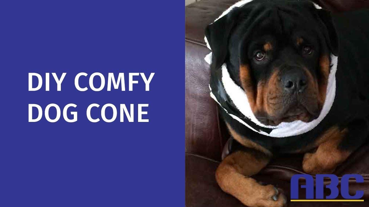 DIY Comfy Dog Cone | How to Make a