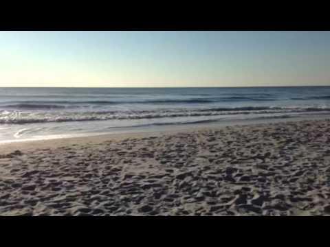 Wave Wednesday January 21