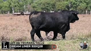 Lot 26 - Telpara Hills DREAMLINER 920Q28