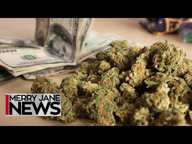 Everything You Need to Know About Canna-Banking | MERRY JANE News