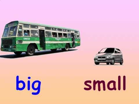 Kids Maths - Concepts of Big and Small - YouTube