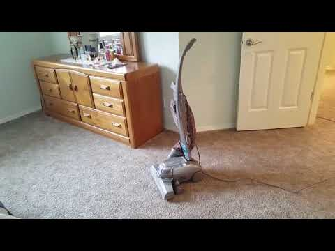 Premium Carpet Care Happy Valley - YouTube