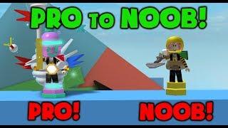 PRO to NOOB!!! Roblox Bee Swarm Simulator