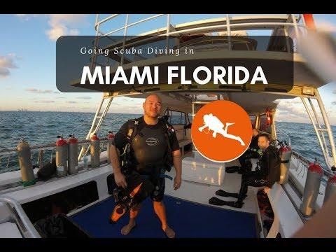 Scuba Diving In Miami Beach Florida