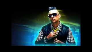 Download Sean Paul Dream Girl 2012 MP3 song and Music Video