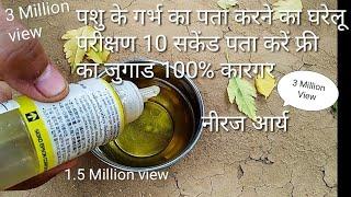 पशु के गर्भ ठहरा या नही पता करें घर पर 10 सैकंड में फ्री का जुगाड 100% कारगर Holistan Frizen Cow