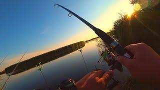 Рыбалка на красивой реке летом 2020 ОНА точно ПОТЕРЯЛА СТРАХ !!!