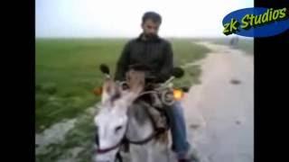 Funny and Amazing Pakistani Video compilation