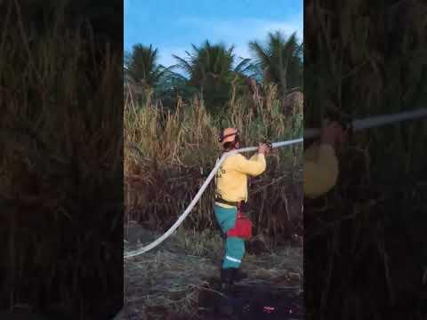 Combate a Incêndios florestais em Poranga