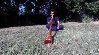 Christian Muela | didgeridoo KARAOKE training 2 - Frogs Ballad