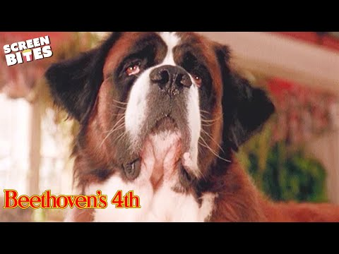 Beethoven's 4th: Naughty Beethoven angers Richard Judge Reinhold and Julia Beth Newton