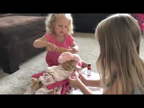 Heather Maack - Kitty Cat Spa Day